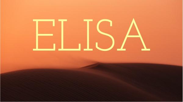 Elisa - Blickwechsel - Krisen überwinden